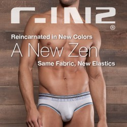 Style Brief – C-IN2 Zen