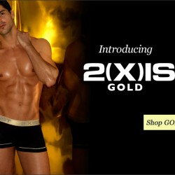 Style Brief – 2(x)ist Gold