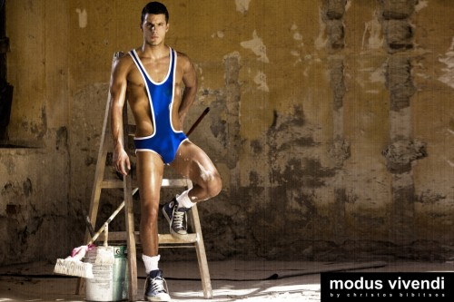 Modus Vivendi Painter line 02