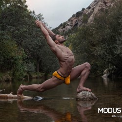 Modus Vivendi Releases the Buddha Line