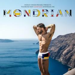 Modus Vivendi releases the Mondrian Swimwear line