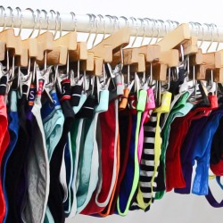 The Most Annoying Things about Underwear