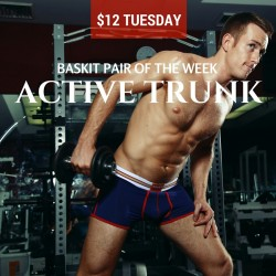 Baskit $12 Tuesday Active Trunk