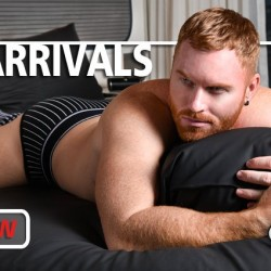 New Arrivals at UnderBriefs