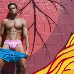 Modus Vivendi Launches the Candy Line