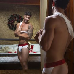 Modus Vivendi Christmas special campaign and free gifts