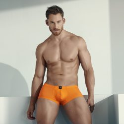 Drive Some Color in Your Life with Gregg Homme