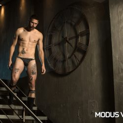 Modus Vivendi revisits Polkadot with a new line
