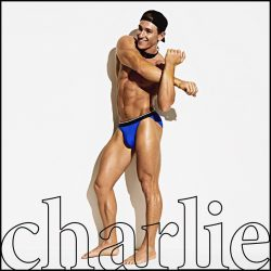 Brief Distraction featuring Charlie by Matthew Zink