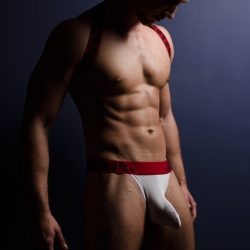 Brief Distraction featuring 4 Hunks Swing Thong