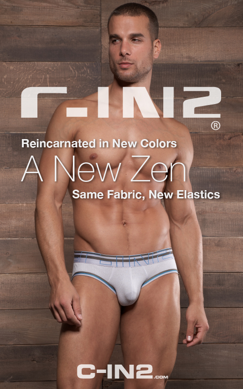 Style Brief - C-IN2 Zen