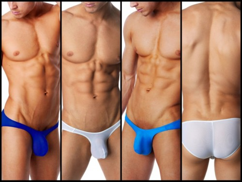 body-aware-well-endowed-brief