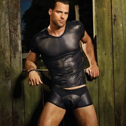 Style Brief – Gregg Homme Impulse Line