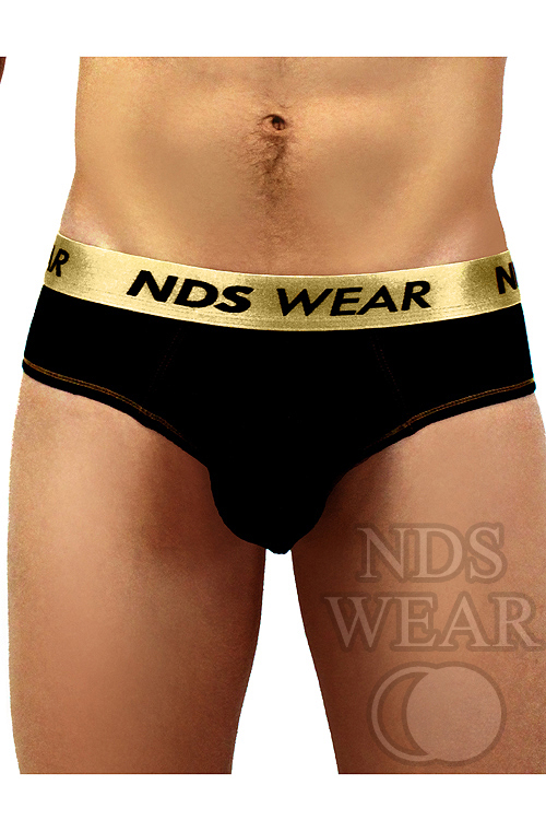 Review – NDS Gold Status Brief