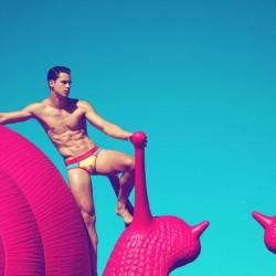 Brief Tale – UNB Paul's tale of underwear