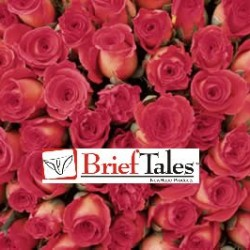 Brief Tales – Valentines Day