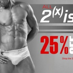 Skiviez – 25% off All 2(x)ist