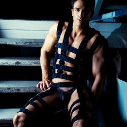 Brief Distraction featuring Philip Fusco and Gregg Homme