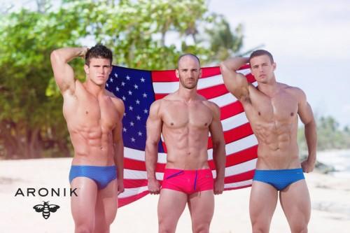 Aronik-Flag-Trio