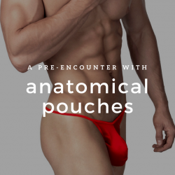 A Pre-Encounter with Anatomical Pouches