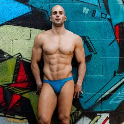 Brief Distraction featuring the Todd Sanfield Collection