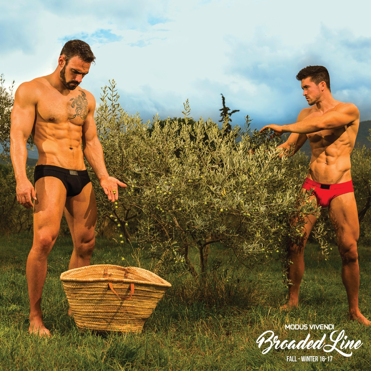 Your new basics by Modus Vivendi - Broaded line