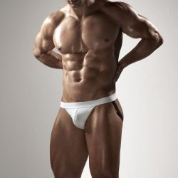 Brief Distraction featuring Todd Sanfield Collection