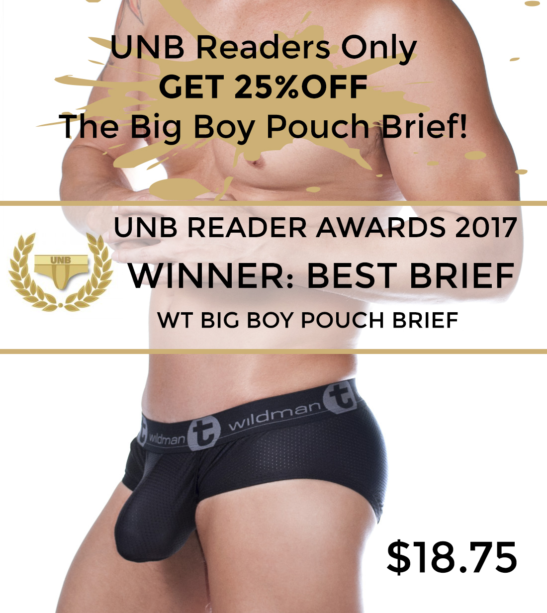 Get the Winner of the Best Brief from WildmanT