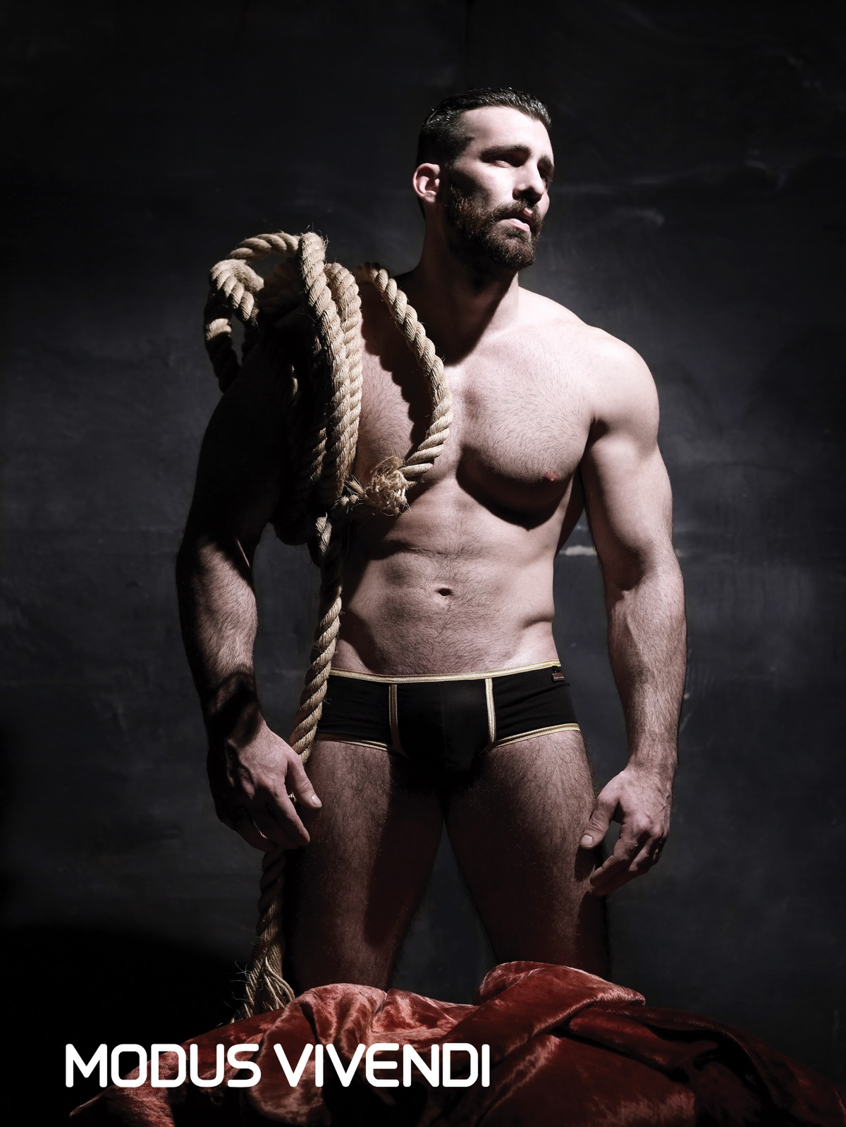 Modus Vivendi releases the Handcrafted Line