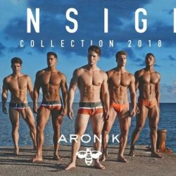 Aronik continues great design with Ensign Collection