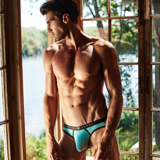 Brief Distraction featuring Gregg Homme