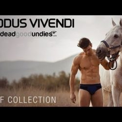 Video – Modus Vivendi Wolf Collection