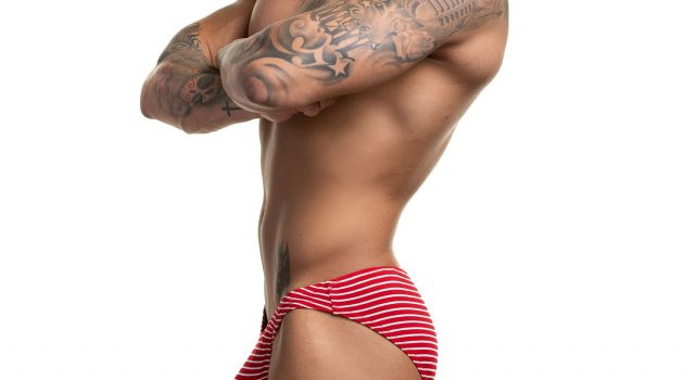 Celebrate the Holidays with N2N Holiday Stripe