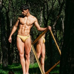 Brief Distraction featuring Modus Vivendi
