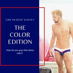 UNB Reader Survey Results – Color