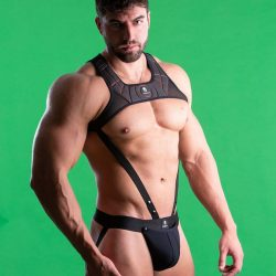 Brief Distraction featuring Sparta Harness
