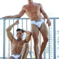 Underwear Review – Box Menswear Brief