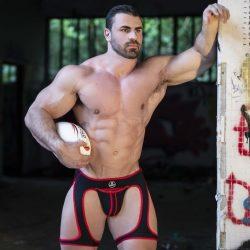 Brief Distraction featuring Spartas Harness
