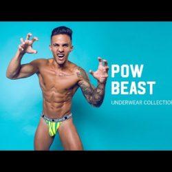 POW Beast Underwear