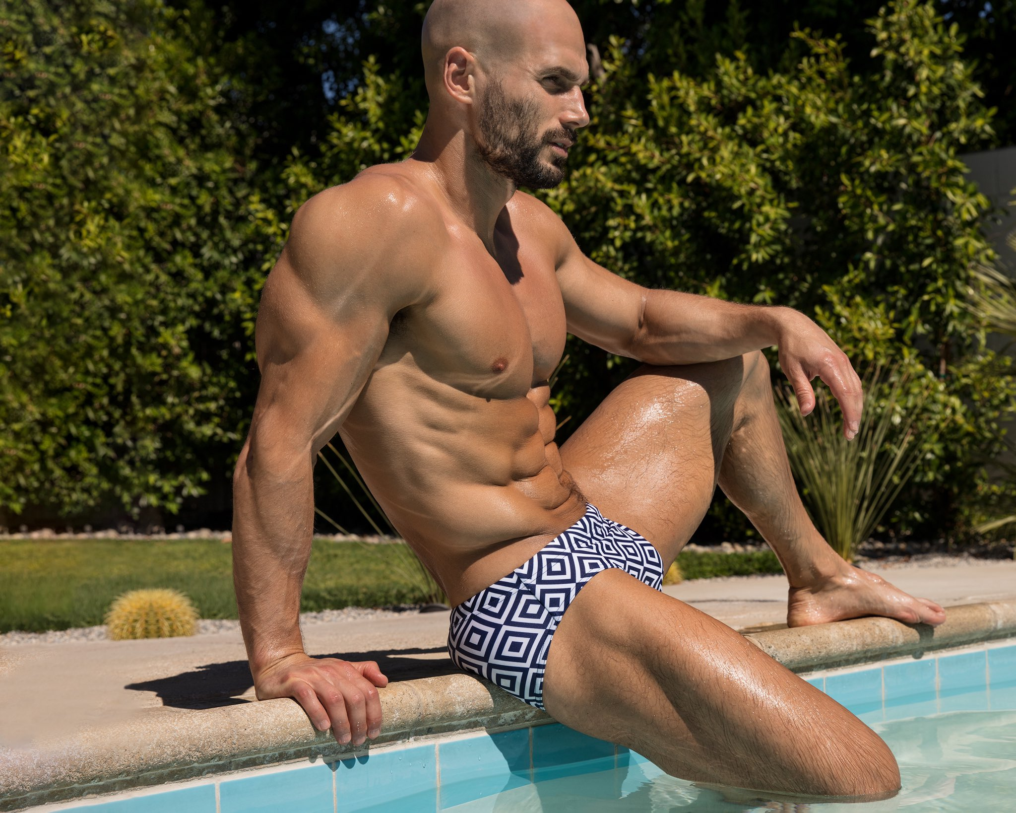 Brief Distraction featuring Todd Sandfield Collection