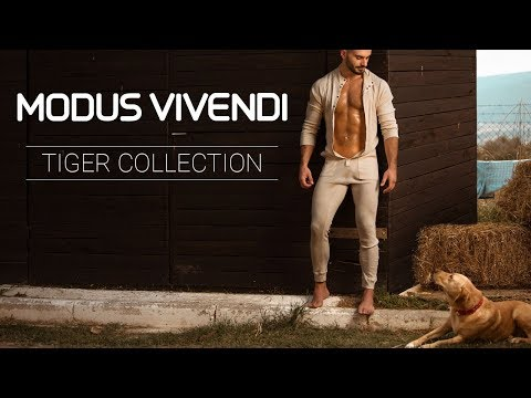 TBT Video -Modus Vivendi Men's Underwear Tiger Collection